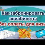 Как сделать бронь авиабилета для визы без предоплаты или с минимальными потерями
